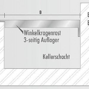 [2284-05] Detail zu Winkelkragenroste